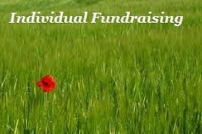 70 Engaging and Easy! Fundraising Event Ideas For Your