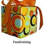 Fundraising Reward Programs
