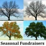 Seasonal Fundraisers