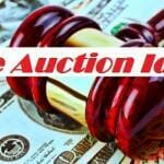 Live Auction Ideas