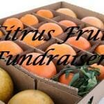 Citrus Fruit Fundraiser Tips