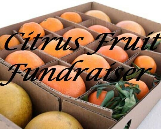 Citrus Fruit Fundraiser Tips - 4 Ways To Triple Your Profits