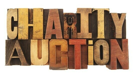 Fundraising auction tips meet greet thank for Auction advice