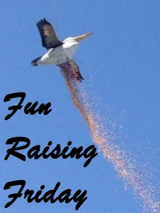 Fun Raising Friday - Giant pelican drops 100,000 golf balls in raffle drop fundraiser