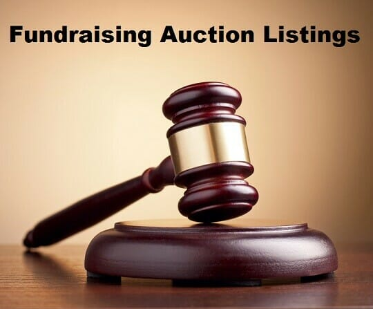 Fundraising Auction Listings